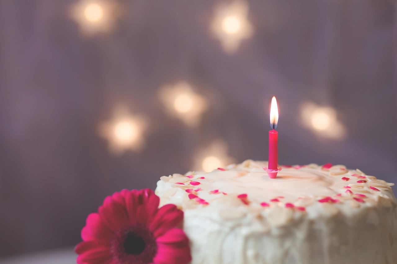 Makarani Dan grada proslavili uz divovsku rođendansku tortu