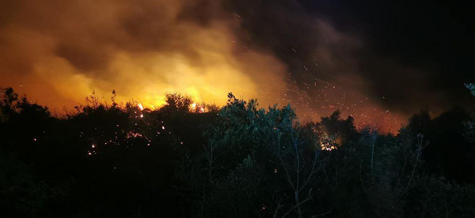 Požar na Braču – Gorjela borova šuma u naselju Bobovišća