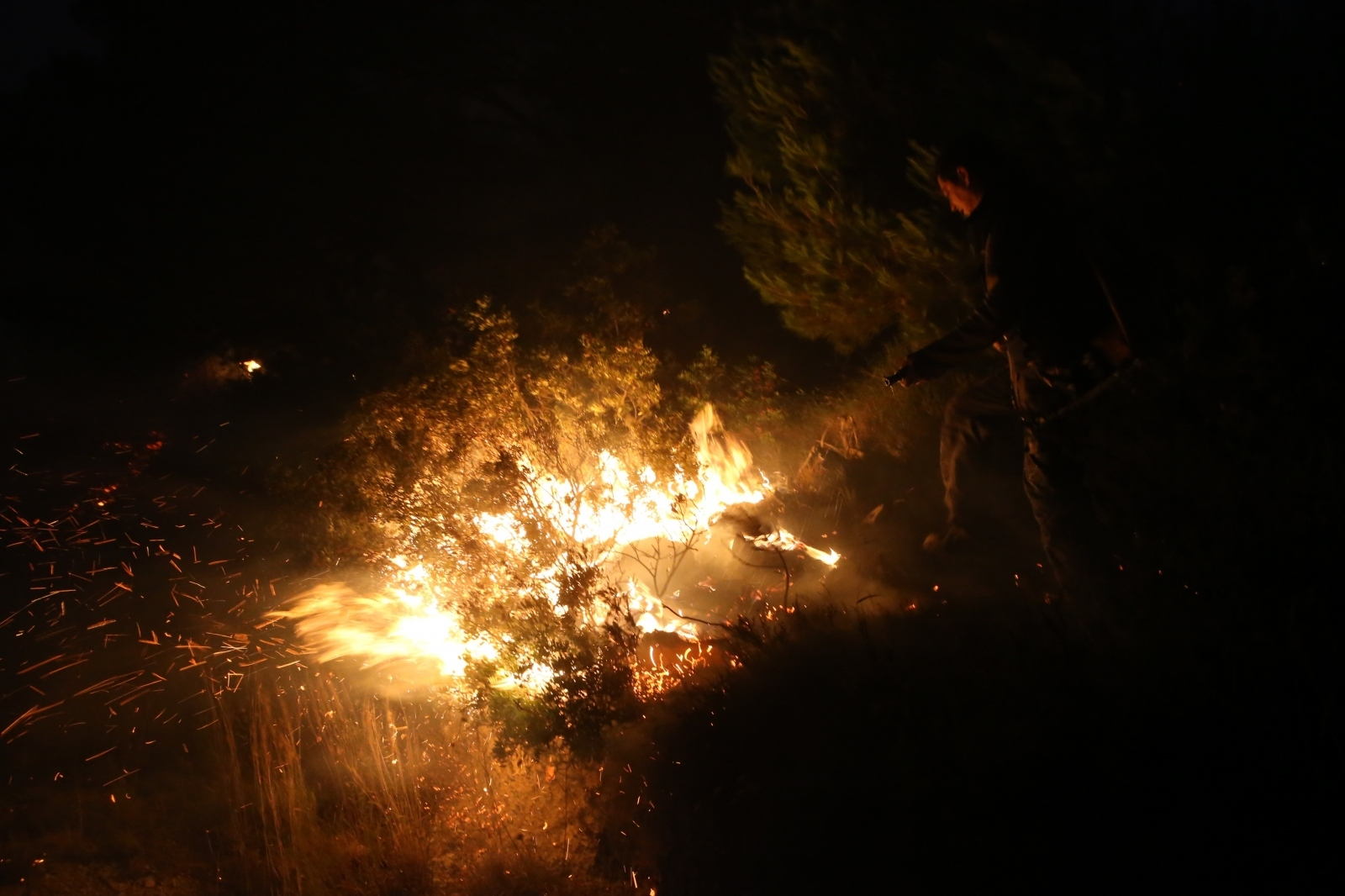 Požar u Tučepima – Izgorjelo je 100 kvadratnih metara makije